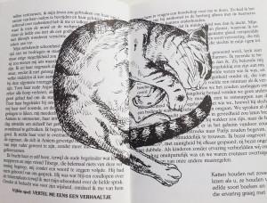 Kat tussen de pagina's